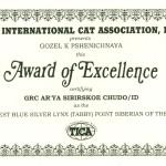 Arya's certificate0001